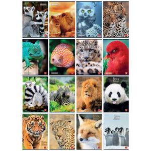 Bilježnica A4/D Pigna Animal